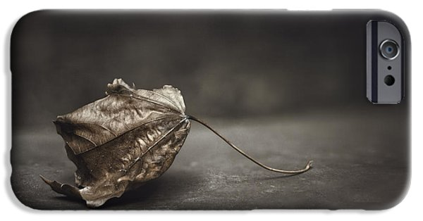 Fallen Leaf IPhone Case by Scott Norris