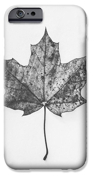 Fallen Red In Monochrome IPhone Case by Kate Morton