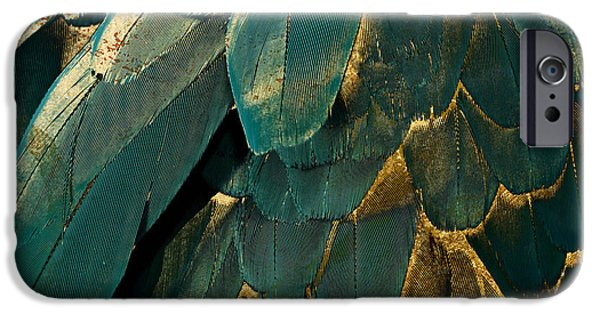 Feather Glitter Teal And Gold IPhone 6s Case by Mindy Sommers
