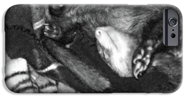 Ferret In His Yu-gi-oh Blanket Nest - Black And White IPhone Case by Mary Ann Weger