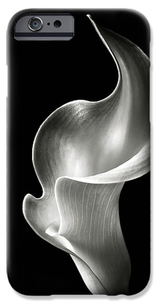 Flame Calla Lily In Black And White IPhone Case by Endre Balogh