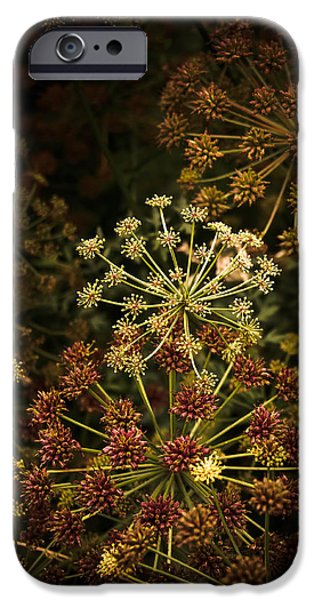 Floral Fireworks #02 IPhone Case by Loriental Photography