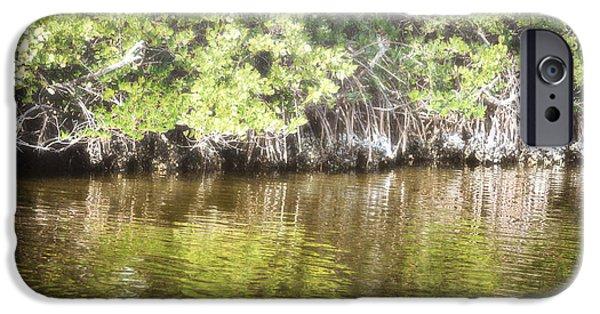 Florida Woodland Mangroves Landscape IPhone Case by Andrea Hazel Ihlefeld