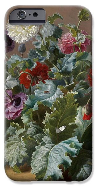 Flower Piece With Poppies And Butterflies IPhone 6s Case by Celestial Images