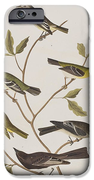 Fly Catchers IPhone 6s Case by John James Audubon
