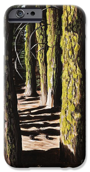 Forest Shadows IPhone Case by Wendy Galletta