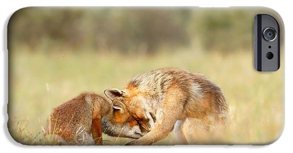 Foreverandeverandever - Red Fox Love IPhone Case by Roeselien Raimond