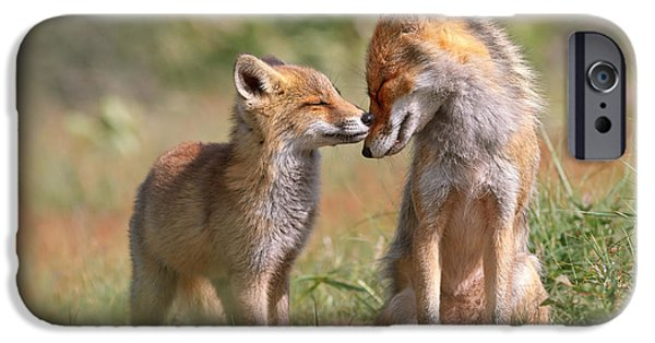 Fox Felicity II - Mother And Fox Kit Showing Love And Affection IPhone Case by Roeselien Raimond