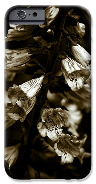 Foxglove Flowers IPhone Case by Frank Tschakert