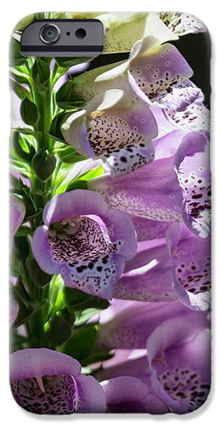 Foxglove  IPhone Case by Saija Lehtonen