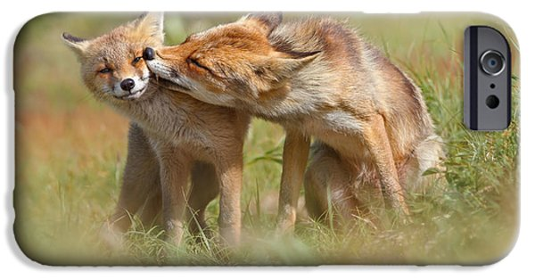 Foxy Love Series - But Mo-om II IPhone Case by Roeselien Raimond