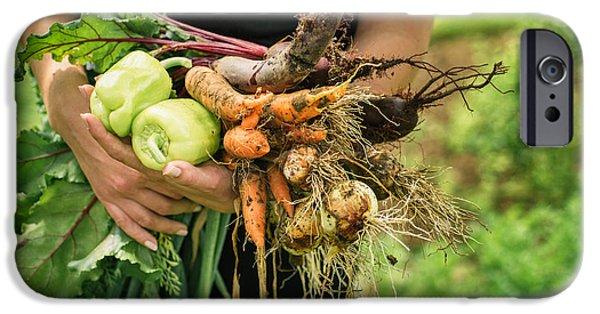 Fresh Vegetables IPhone Case by Viktor Pravdica
