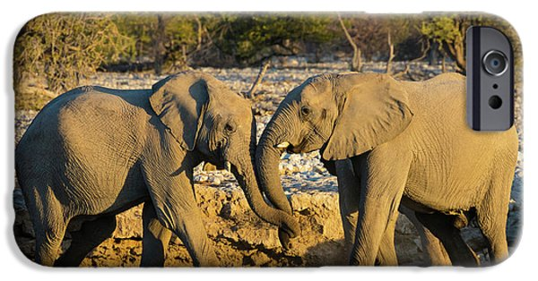 Friendly Trunks IPhone Case by Inge Johnsson