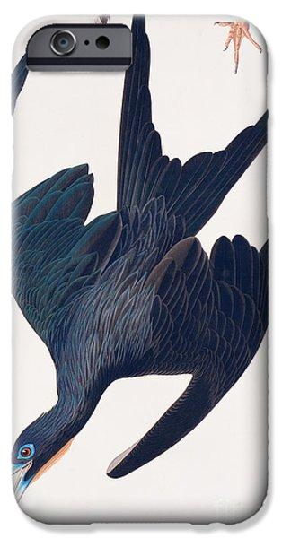 Frigate Penguin IPhone 6s Case by John James Audubon