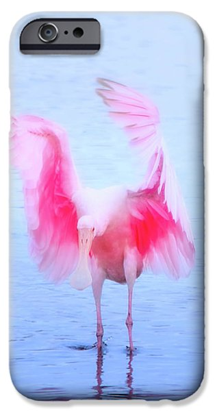From The Heavens IPhone 6s Case by Mark Andrew Thomas