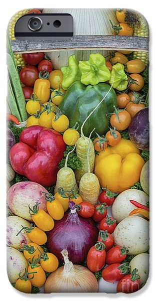 Garden Produce IPhone 6s Case by Tim Gainey