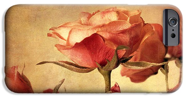 Gilded Roses IPhone Case by Jessica Jenney