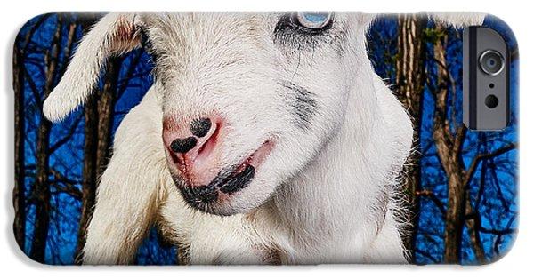 Goat High Fashion Runway IPhone 6s Case by TC Morgan