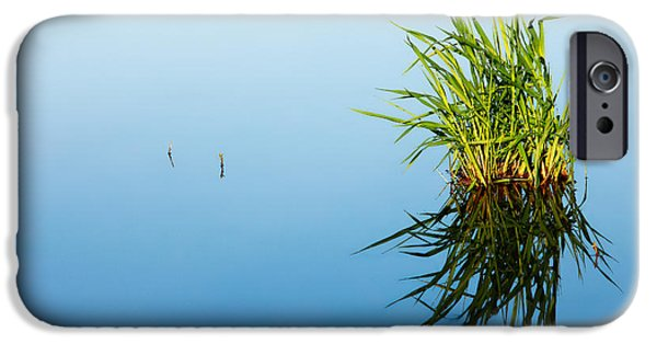 Grass In Blue IPhone Case by Todd Klassy