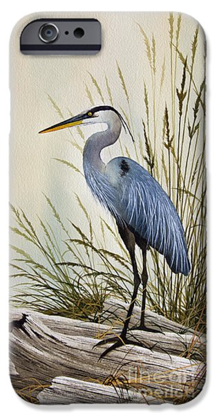 Great Blue Heron Shore IPhone Case by James Williamson