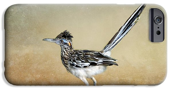 Greater Roadrunner 2 IPhone 6s Case by Betty LaRue