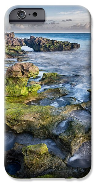 Greenery In Coral Cove IPhone Case by Andres Leon
