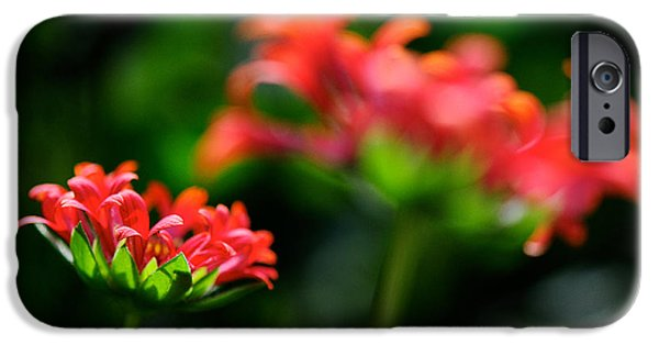 Growing Up IPhone 6s Case by Lois Bryan