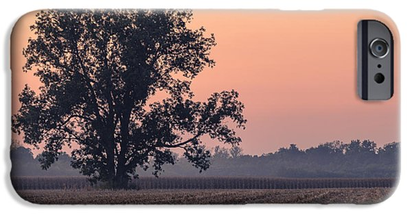 Harvest Tree IPhone Case by Andrea Kappler