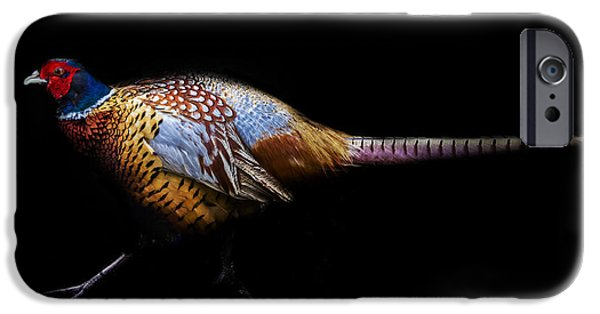 Have A Pheasant Day.. IPhone 6s Case by Martin Newman