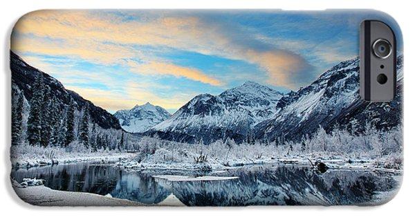 Hoar Frost IPhone Case by Ed Boudreau