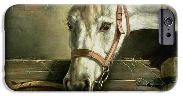 Horse And Kittens IPhone Case by Moritz Muller