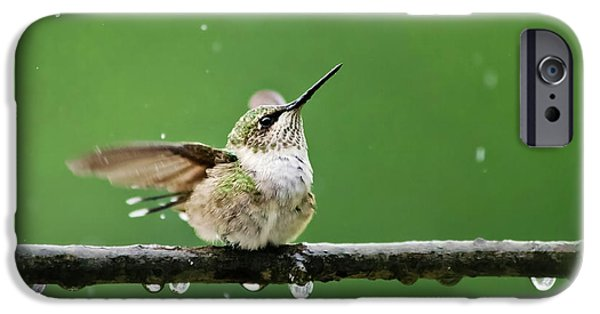 Hummingbird In The Rain IPhone 6s Case by Christina Rollo