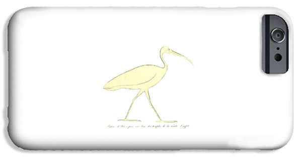 Ibis IPhone Case by Unknown