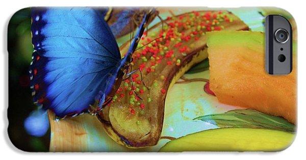 Juicy Fruit IPhone Case by Debbi Granruth