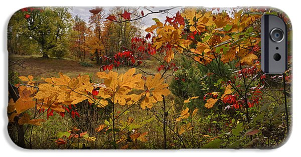 Kentucky Fall Colors IPhone Case by Wendell Thompson