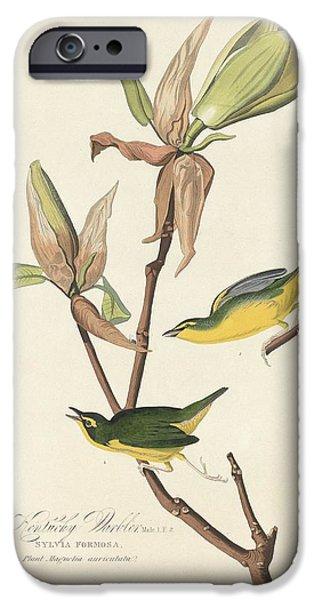 Kentucky Warbler IPhone 6s Case by John James Audubon