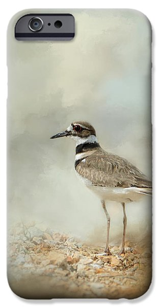Killdeer On The Rocks IPhone Case by Jai Johnson