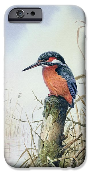 Kingfisher IPhone 6s Case by Carl Donner