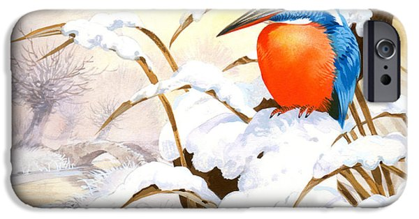 Kingfisher Plate IPhone Case by John Francis