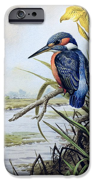 Kingfisher With Flag Iris And Windmill IPhone 6s Case by Carl Donner