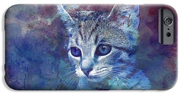 Kitten IPhone Case by Jutta Maria Pusl