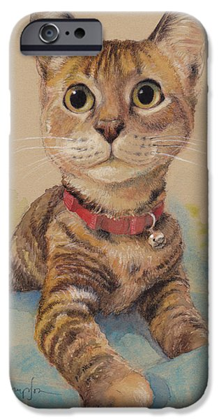 Kitten On The Loose IPhone Case by Tracie Thompson