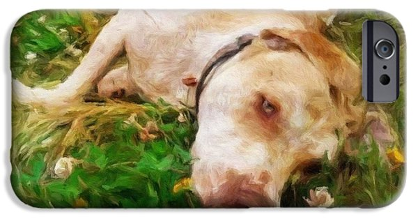 Labrabull Baby - Impressionist Painting IPhone Case by Katrina Britt
