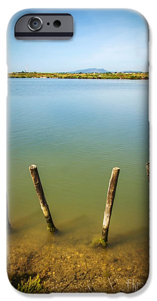 Lake And Poles IPhone Case by Carlos Caetano