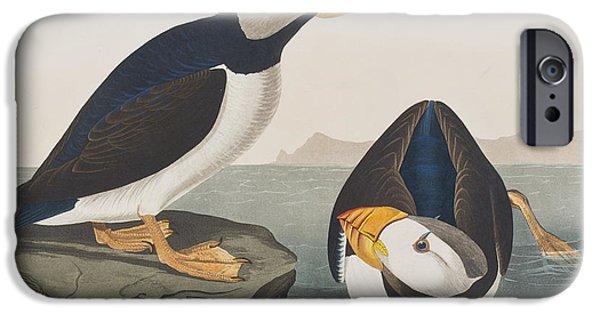 Large Billed Puffin IPhone 6s Case by John James Audubon