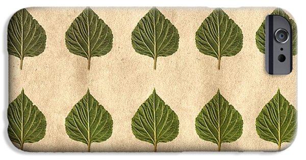 Leaf Collage IPhone Case by Sumit Mehndiratta