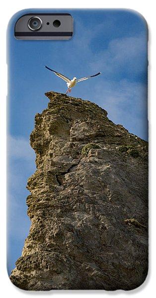 Liftoff IPhone Case by Darren  White