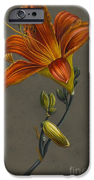 Lily IPhone Case by Louise D'Orleans