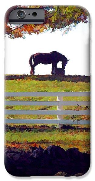 Equine Solitude IPhone Case by Sam Davis Johnson