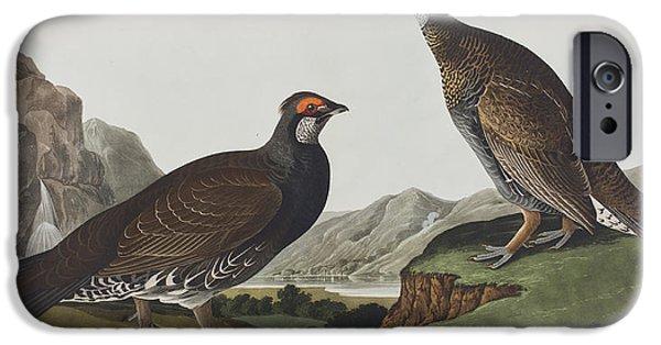 Long-tailed Or Dusky Grous IPhone 6s Case by John James Audubon